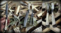 Zobrazenie témy - Parožie, kosti, zuby...