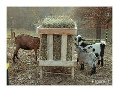 DIY Square Bale Goat Hay Feeder - Suitable for both horned and non horned goats. Just make sure to ALWAYS keep it full of hay.