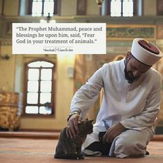 Find images and videos about islam, allah and الله on We Heart It - the app to get lost in what you love. Islamic Quotes, Islamic Teachings, Muslim Quotes, Religious Quotes, Prophet Muhammad Quotes, Quran Quotes, Hadith Quotes, Hindi Quotes, Qoutes