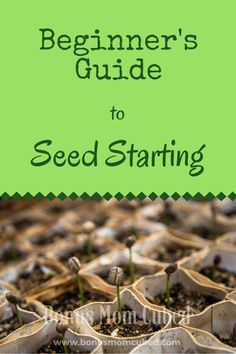 Whether you are a seasoned gardener or a beginner, this Beginner's Guide to Seed Starting will show you how growing a garden is good for you. It feeds the soul and the soil, and can even feed your family. Organic gardens are as good for the earth as they are for its lucky inhabitants. The secret to growing a healthy, lush garden all begins with a single seed.