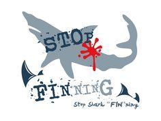 "Stop Shark ""FIN""ning...  Say no to shark fin soup,  stop shark finning,    no sale no killing!  By hansonboi"