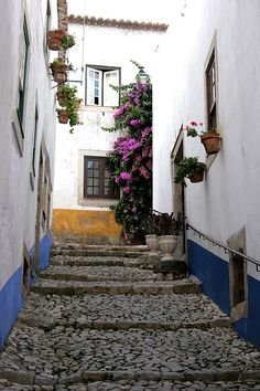 Obidos, Portugal Sprinkled the town with wine and magic.  #blessed #girlsgetaway2013