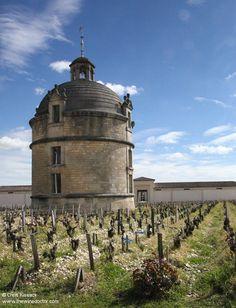 The dovecot, Château Latour, April 2017 Chateau Latour, Bordeaux Wine, Fairy Godmother, Wonderful Places, Bottles, Louvre, Bucket, Building, Travel