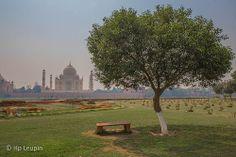 Take a break! Take A Break, Take That, Taj Mahal, India, Building, Travel, Goa India, Viajes, Buildings