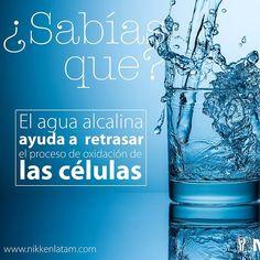 Kangen Water, Infused Water, Herbalife, Ayurveda, Did You Know, Dental, Invitations, Bottle, Health