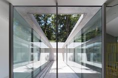 Enclosed courtyards frame views of trees and sky at house in a Japanese forest