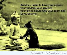 Image result for buddha quotes on friendship