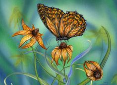 Summer Wings by Denise Freeman ~ butterfly ~ nature up close