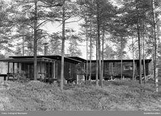 Bolighus, Ing. Engen, Moelv. Tegnet av arkitekt Are Vesterlid, Arkitim, Hamar. Eksteriør, hus plassert i terreng, furuskog.  @ DigitaltMuseum.no