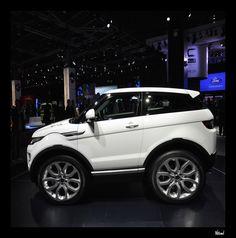 Mini Range Rover Evoque