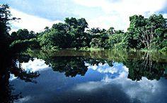 Parque La Paya in Colombia