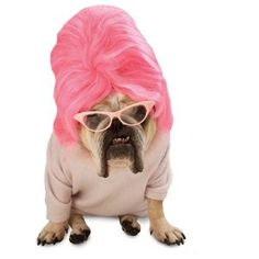 PMG Zelda Wisdom Bouffant Pet Dog Costume, Size Large http://keeplookingbusy.com/itemDetails.aspx?id=B0090698QC