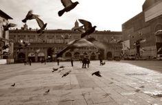 Bologna, Piazza Maggiore, foto di Gianluca Nadalini