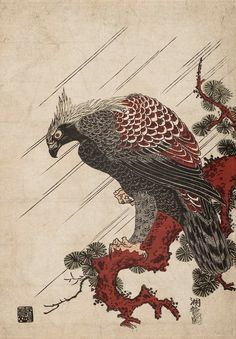 Eagle on a Pine Branch in the Rain.  Woodblock print.  About 1780's, Japan, by artist  Nishimuraya Yohachi (Eijudô).
