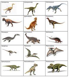 Quando i bambini adorano i dinosauri Dinosaurs Names And Pictures, Names Of Dinosaurs, Jurassic World Dinosaurs, Dinosaur Printables, Dinosaur Cards, Dinosaur Activities, Activities For Kids, Dinosaur Dinosaur, Dinosaur Sketch