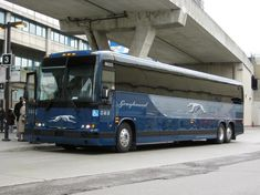 trailways bus lines bus pictures | New Greyhound Buses - SkyscraperCity