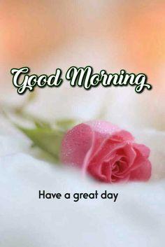 Good Morning Massage, Good Morning Coffee, Good Morning Love, Good Morning Wishes, Good Morning Quotes, Hindi Books, Good Morning Images Hd, Happy Morning, Have A Great Day