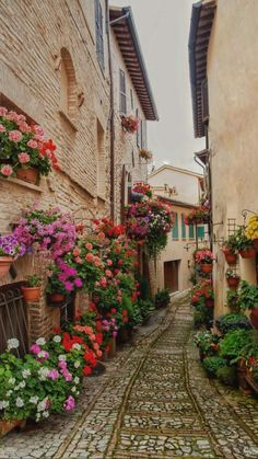 Beautiful Places To Travel, Beautiful World, Beautiful Gardens, Beautiful Flowers, Romantic Travel, Beau Site, Flower Festival, Beautiful Streets, Medieval Town