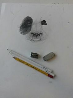 1 September 2017  Dawing a Panda 🐼
