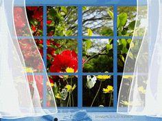 """...Bem aqui dentro, num canto singelo da alma, coloquei uma janela. Escolhi deixá-la sempre aberta, faço isso pra não me adoecer Porque alma sem estações, enferruja; E alma sem natureza, entristece; É pra isso a janela: pra encher de vida a vida da gente ! """"  _Tathiana Oliveira"""