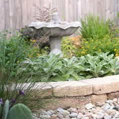 6 Landscaping Tips for Small Yards