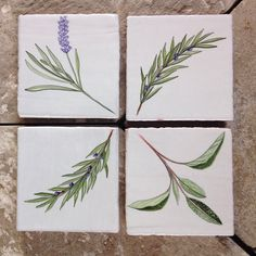 My herb tiles <3 carol brannigan design