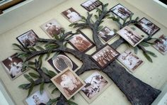 How To Make A Family Tree Picture Shadow Box Project Homesteading  - The Homestead Survival .Com