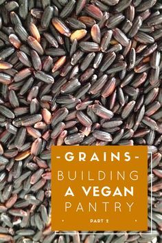 All about stocking your pantry with grains, including vegan recipe links to use it all up!