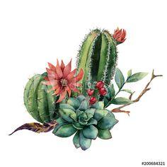 Cactus Drawing, Watercolor Cactus, Pastel Watercolor, Cactus Art, Watercolor Leaves, Cactus Plants, Tea Rose Garden, Succulent Tattoo, Cactus Illustration