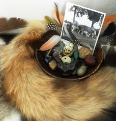 Delving Deeper Into Animal Divination Bring Back Lost Lover, Mending A Broken Heart, Animal Medicine, Finding Your Soulmate, Pow Wow, The Way You Are, Love Your Life, Herbal Medicine, Voodoo