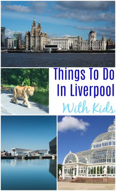 Things to do in Liverpool with kids Family Days Out, All Family, Family Holiday, Travel With Kids, Family Travel, Travel Uk, Travel Europe, Travel England, Holiday Destinations