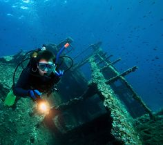 Cozumel, Cancun, Riviera Nayarit, Tour, Wordpress, Concert, Deep Blue, Diving, Viajes