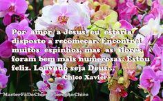 Lu Amorim - Google+Por amor a Jesus eu estaria disposto a recomeçar. Encontrei muitos espinhos, mas as flores foram bem mais numerosas. Estou feliz. Louvado seja Deus…                                           - Chico Xavier -