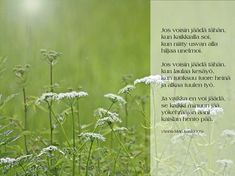 Carpe Diem Quotes, Seriously Funny, Closer To Nature, Picture Video, Nostalgia, Words, Finland, Tomy, Horse