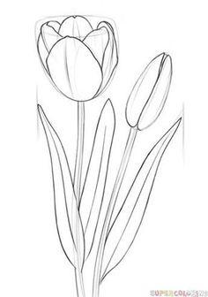 Flowers drawing tutorial pencil art lessons Ideas for 2019 Flower Drawing Tutorials, Drawing Tutorials For Beginners, Flower Sketches, Art Tutorials, Flower Drawings, Flower Drawing For Kids, Beginner Drawing, Flower Pattern Drawing, Pencil Drawings For Beginners
