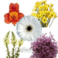 Assorted Farm Mix Combo Pack | FiftyFlowers.com- these are the actual flowers I'm using