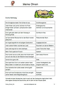 Meine Sinne | Német | Pinterest | German, Kindergarten and Learn german