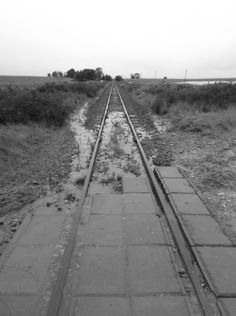 Subsiding flood waters near Swellendam. Railroad Tracks, South Africa, Cape, National Parks, Sidewalk, African, Black And White, Pictures, Painting