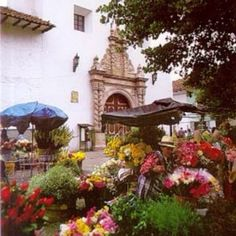 Flower market in Cuenca, Ecuador.  I miss this place so much.