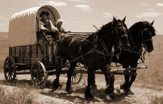 wagon trains | An excerpt from an article by Blanche Burton Hesse :