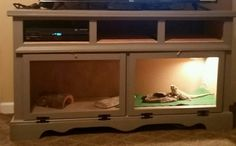 Our DIY Reptile Enclosure from  an old dresser.