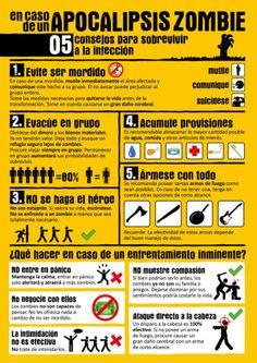 5 cosas que hacer en caso de apocalipsis zombie   El Magallanews.cl,