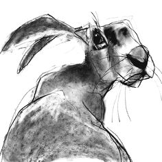 Original drawings by best selling artist Valerie Davide are available as greetings cards. Art And Illustration, Illustrations, Animal Paintings, Animal Drawings, Art Drawings, Watercolor Animals, Watercolor Art, Lapin Art, Rabbit Art