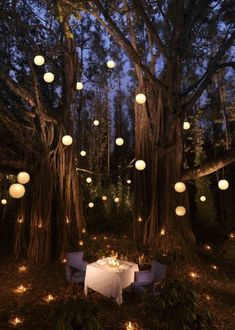 Dream dates, wedding proposals, marriage proposals, proposal ideas, romanti Outdoor Party Lighting, Backyard Lighting, Garden Lighting Ideas, Garden Ideas, Dream Dates, Romantic Night, Romantic Ideas, Romantic Proposal, Romantic Things