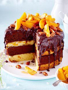 Schoko-Aprikosenkuchen mit karamellisierten Salzmandeln