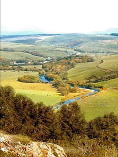The Stinchar Valley in the beautiful carrick countryside of South Ayrshire, Scotland #dogfriendly