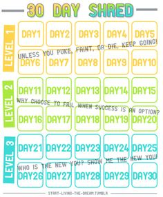 chrissiesgettinghealthy:      Printable chartLink to 30 Day Shred  Level 1  Level 2  Level 3   No excuses!      I am starting the 30DS Tomorrow!! Mean's I'll finish on the 14th of June.. 2 day's before my 21st birthday party. :)