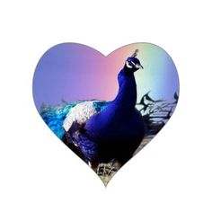 Get your hands on great customizable Peacock stickers from Zazzle. Choose from thousands of designs or make your own today!