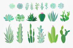 Florarium: succulents & cactuses set - Graphics - 3