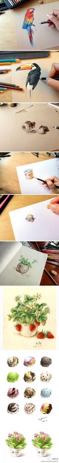 Colored pencil drawings of many different subjects and textures.